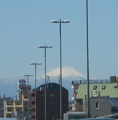2008-fuji01.jpg