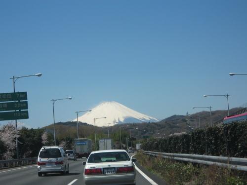 2008-fuji04.jpg